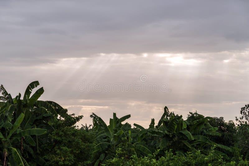 Strålar av ljus som skiner till och med moln arkivfoto