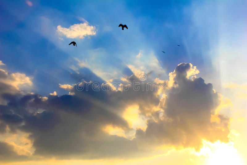 Strålar av solen till och med molnen royaltyfri foto