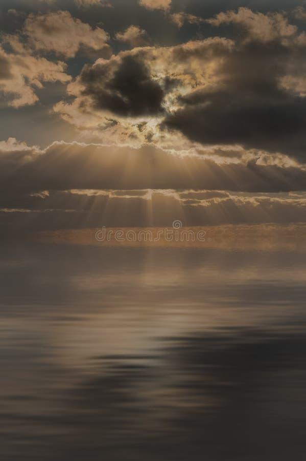 Strålar av solljus royaltyfri bild