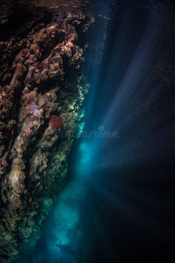 Strålar av solljus som stiger ned som är undervattens- royaltyfri bild