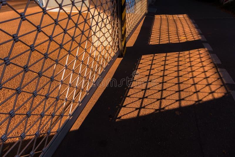 Strålar av varmt solljus arkivbild
