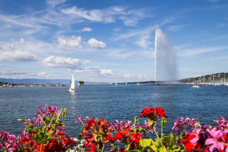 Stråld'Eauen, Genève, Schweiz fotografering för bildbyråer