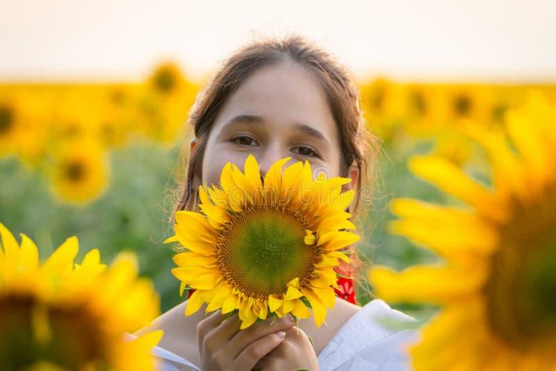 Strålningskänslig flicka med solros på fält royaltyfri fotografi