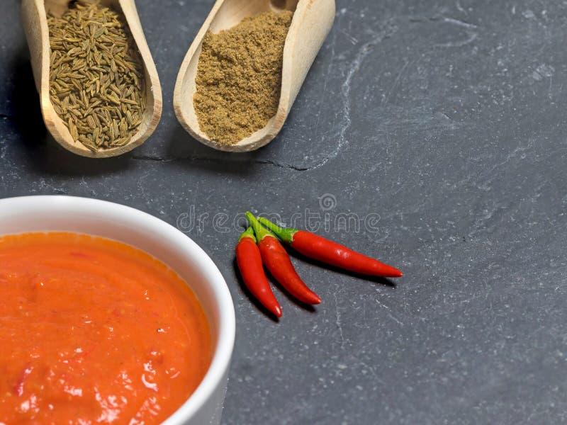 Strålningsytan i Harissa-såsen i runda skålar och ingredienser royaltyfri foto