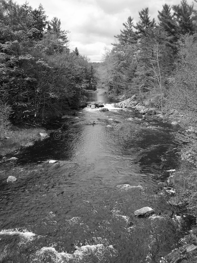 Download Ström arkivfoto. Bild av trees, vitt, sceniskt, horisont - 997528