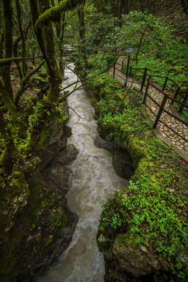 Ström för Martvili kanjonvatten med fotbanan royaltyfri foto