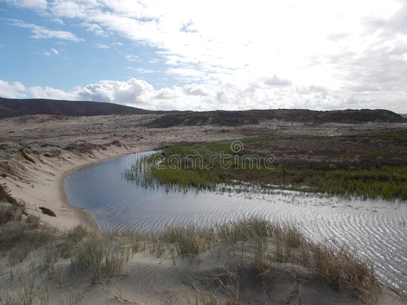 Ström som flödar på nittio milsandstrand ut ur nyazeeländska dyn royaltyfri bild