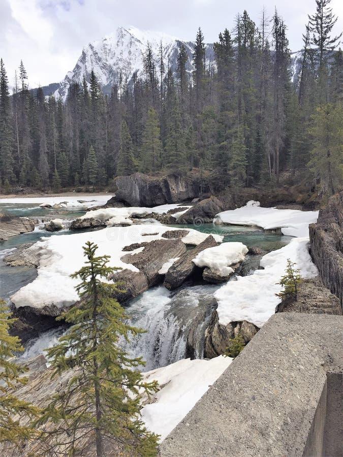 Strömen Sie mit Schnee bedeckten Felsen - Rocky Mountains, Kanada stockfotos