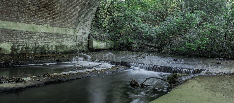 Strömen Sie unter der Braut in Virginia Water, Surrey, Vereinigtes Königreich lizenzfreie stockfotos