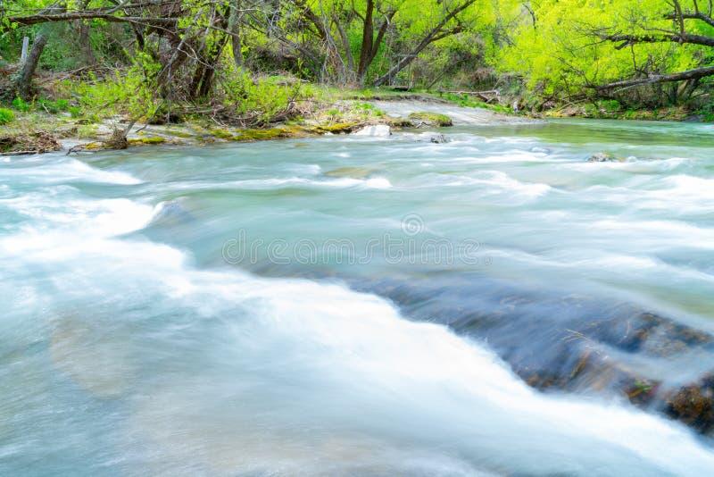Strömflöden till och med skog arkivfoto