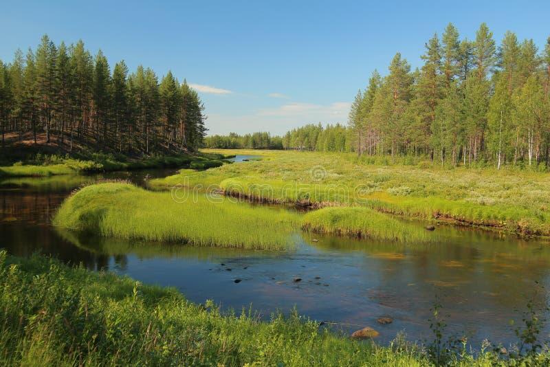 Strömma på Svansele Dammaenger, en tidigare vatten-äng i Sverige arkivfoton