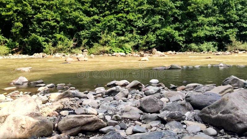 Strömmar av smutsigt vattenflöde till och med stenar i en bergflod arkivbild