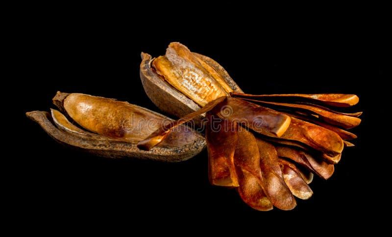 Strąki i ziarna mahoń na czarnym tle zdjęcia stock
