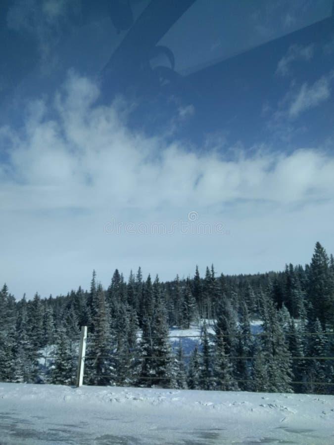 Str?va omkring runt om Banff, Alberta, Calgary i vinter royaltyfri foto