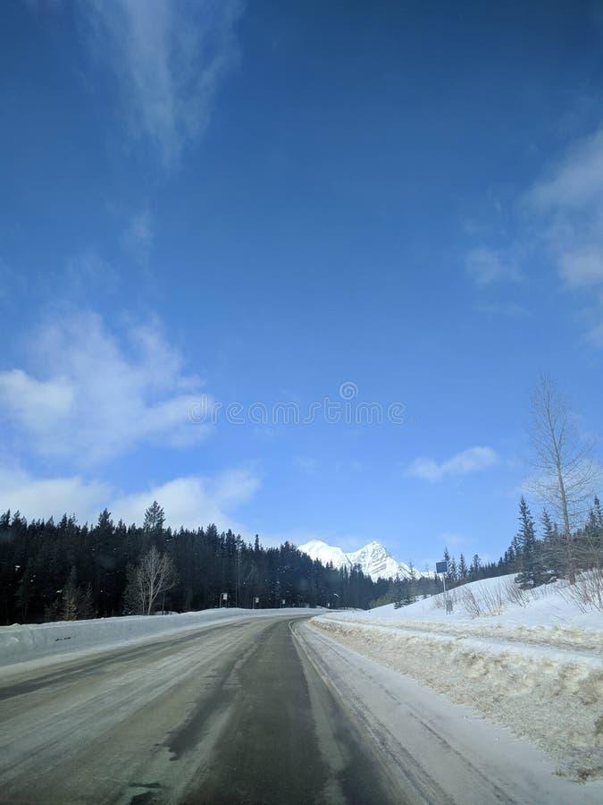 Str?va omkring runt om Banff, Alberta, Calgary i vinter royaltyfri bild