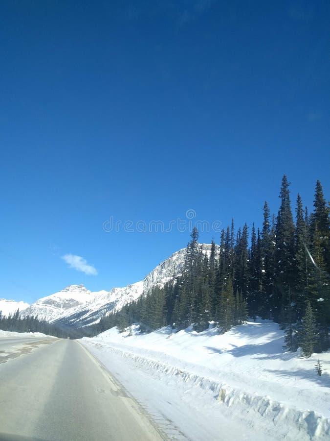 Str?va omkring runt om Banff, Alberta, Calgary i vinter arkivbilder
