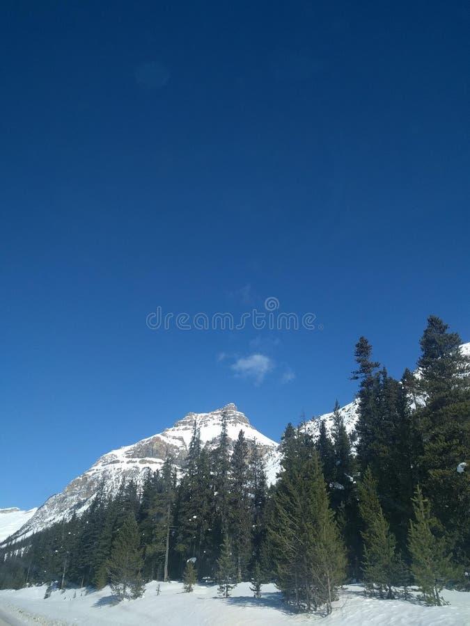 Str?va omkring runt om Banff, Alberta, Calgary i vinter royaltyfri fotografi