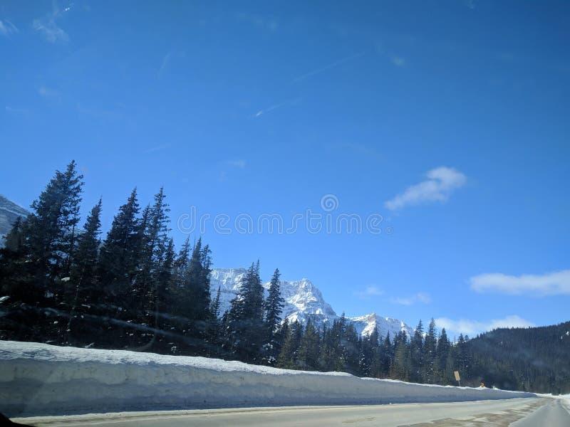 Str?va omkring runt om Banff, Alberta, Calgary i vinter fotografering för bildbyråer