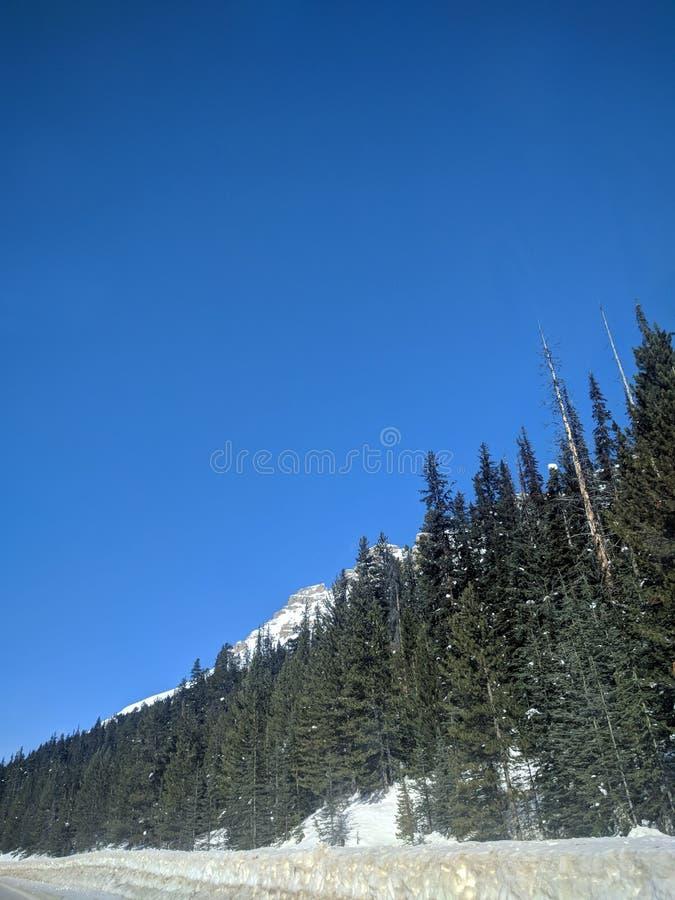 Str?va omkring runt om Banff, Alberta, Calgary i vinter arkivbild