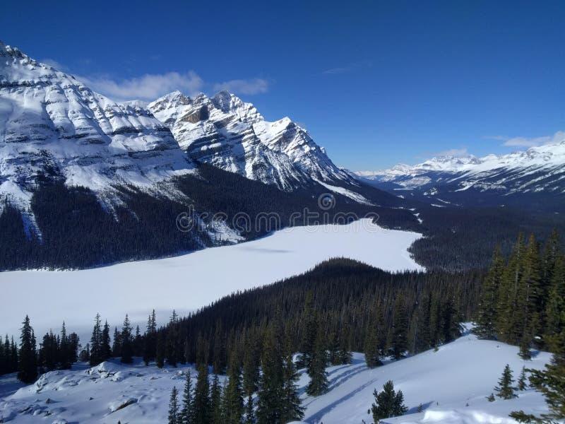 Str?va omkring runt om Banff, Alberta, Calgary i vinter arkivfoto