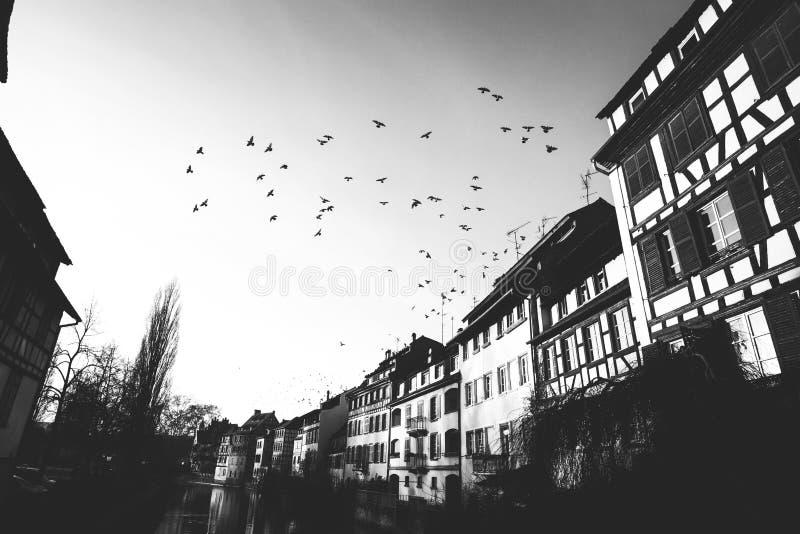 Straßburg, Elsass, Frankreich lizenzfreie stockbilder