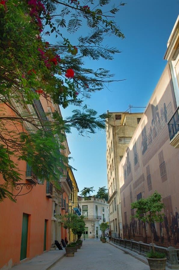 Straße in den bunten Gebäuden des Havanawhit lizenzfreie stockfotografie