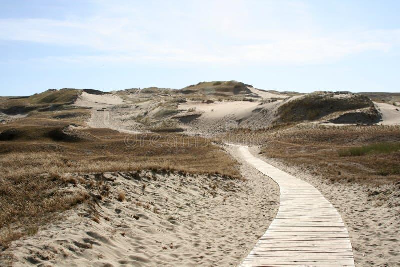 Straße in den Sand stockbild