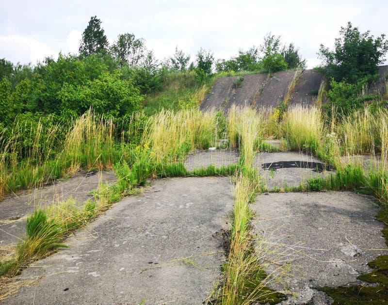 Straße der Betonplatten im Park Grünes Gras um und zwischen grauen Betonplatten stockfotografie