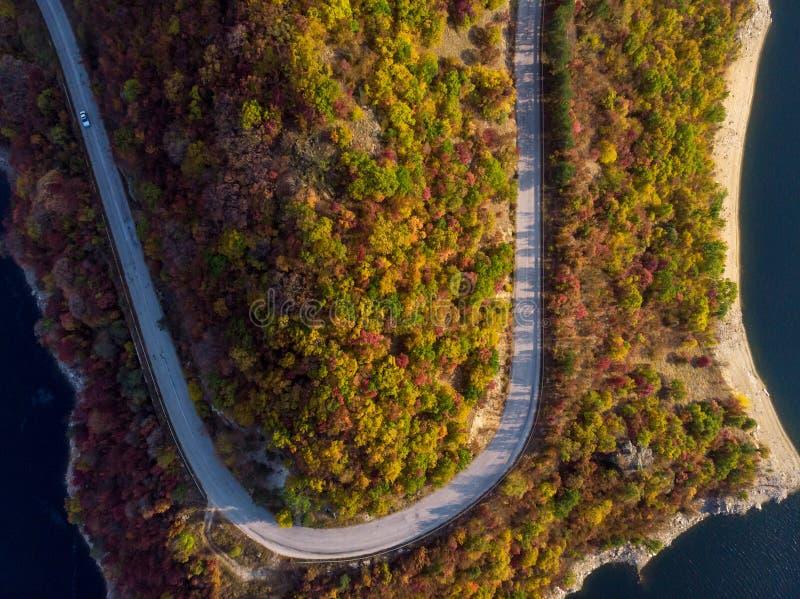 Straße in der Herbstwaldvogelperspektive lizenzfreies stockfoto