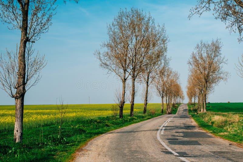 Straße in der Landschaft lizenzfreie stockfotos