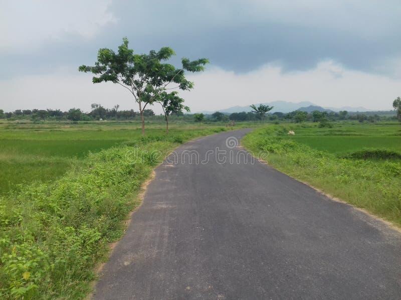 Straße in der Regenjahreszeit stockbilder