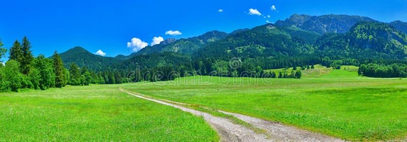 Straße in der Sommerlandschaft, Alpen, Deutschland stockbilder