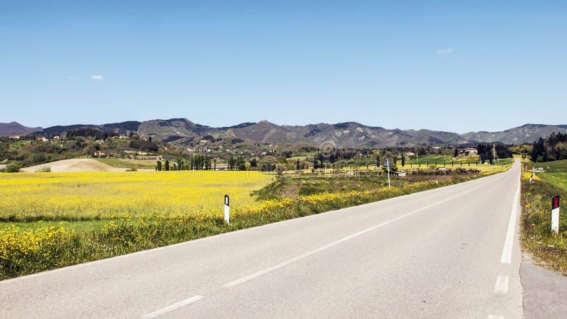 Straße in der toskanischen Landschaft lizenzfreie stockbilder
