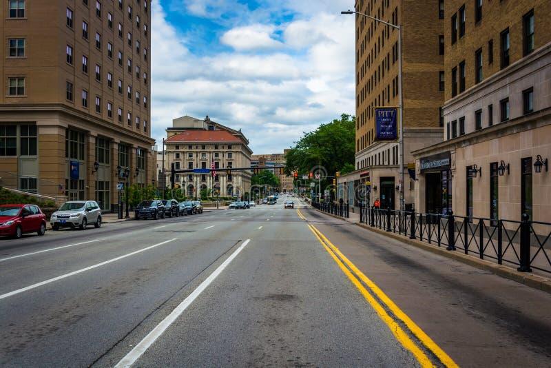 Straße an der Universität von Pittsburgh, in Pittsburgh, Pennsylva lizenzfreies stockbild