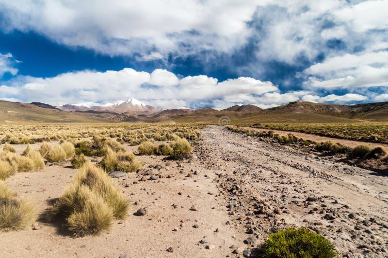 Straße durch altiplano in Boliv lizenzfreies stockbild