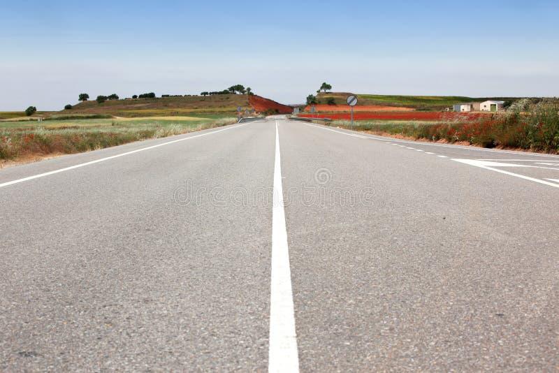 Straße durch das Feld stockfoto