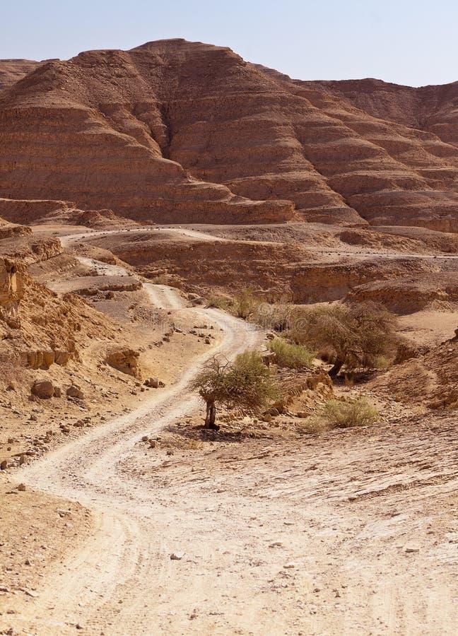 Straße durch Wüste Negev-Hügel lizenzfreie stockfotos