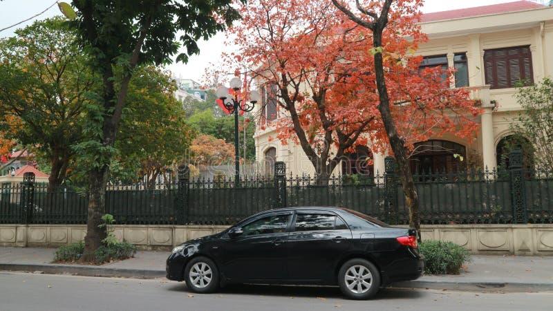 Straße ha Noi im Herbst stockfoto