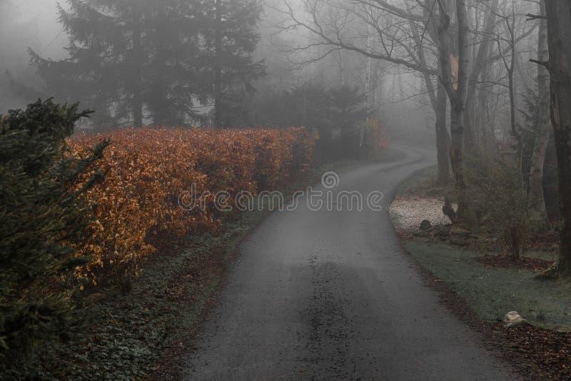 Straße im Dunst lizenzfreie stockfotos