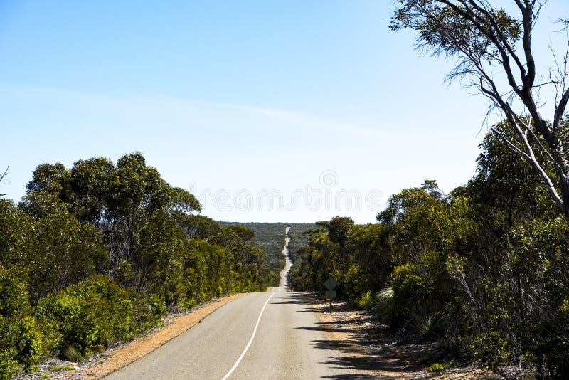 Straße im Flinders-Verfolgungs-Nationalpark, Känguru-Insel, Australien lizenzfreies stockbild