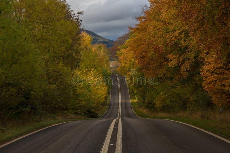 Straße im Herbst lizenzfreies stockfoto