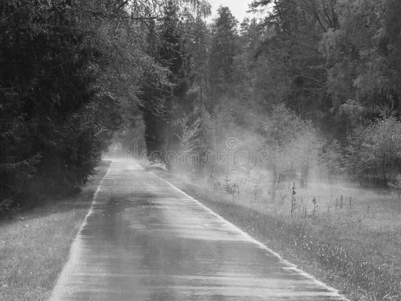Straße im Nebel stockbilder