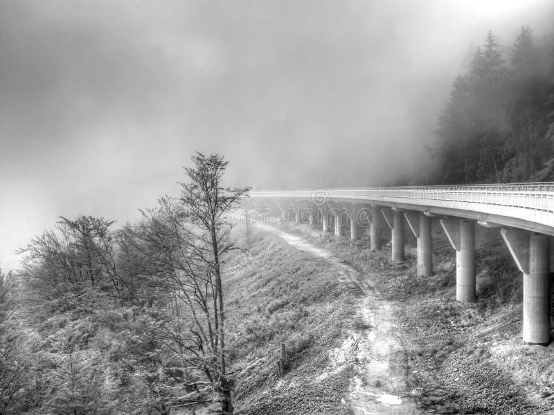 Straße im Nebel lizenzfreie stockfotos