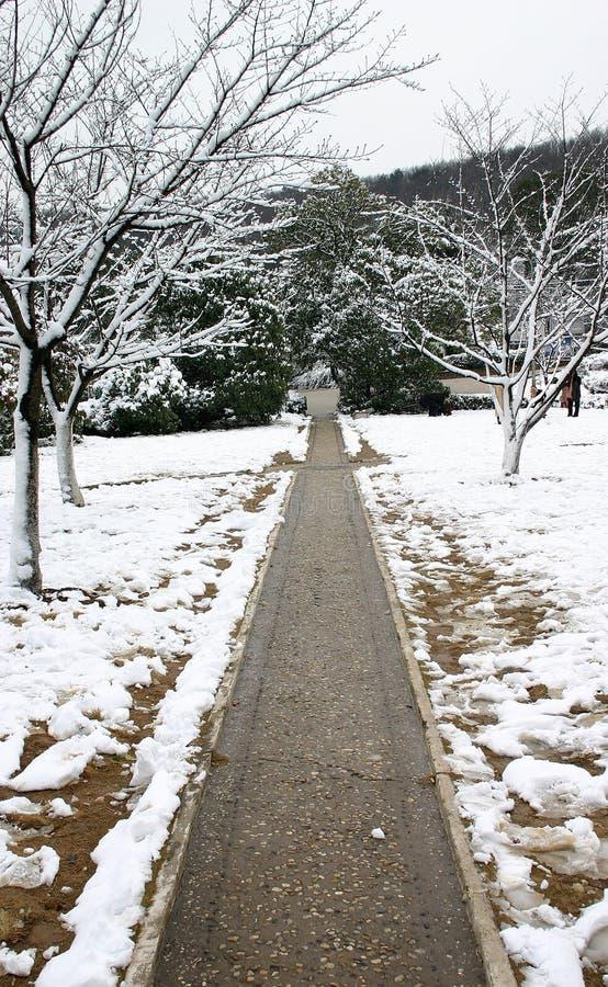 Straße im Schnee stockfotografie