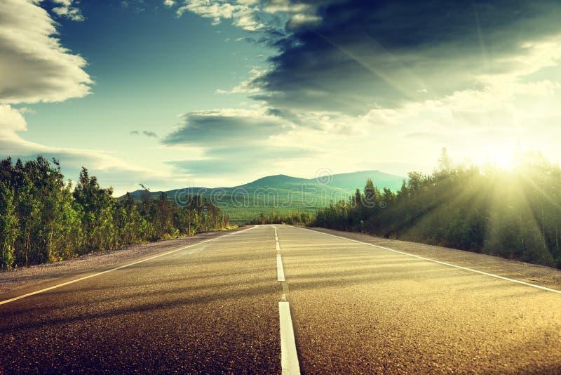 Straße im Sommerwald stockbild