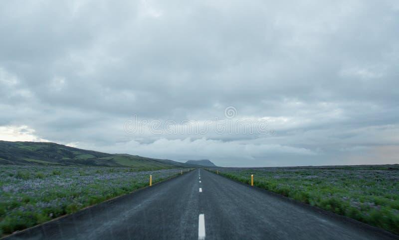 Straße im Tal-Nationalpark Landmannalaugar, Island im Juli lizenzfreie stockbilder