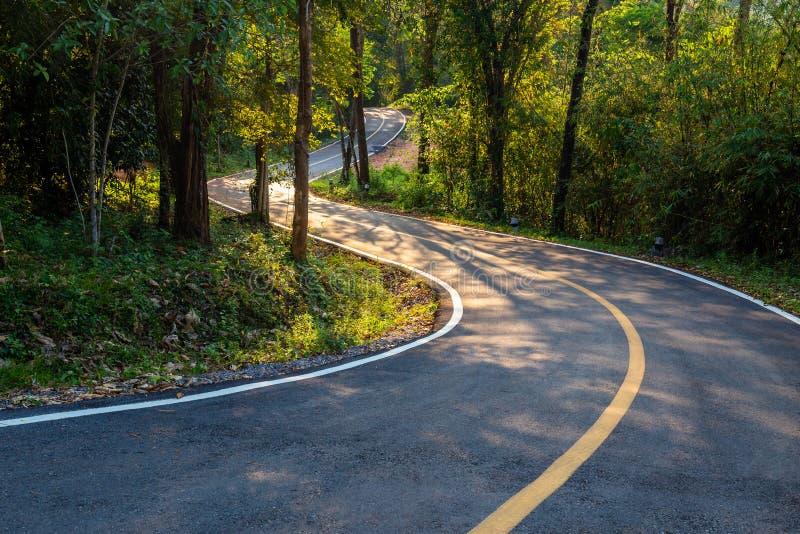 Straße im Wald, Nationalpark Thung Salaeng Luang, Thailand stockbild