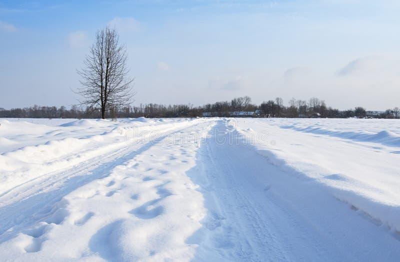 Straße ist im Winterwald stockbilder