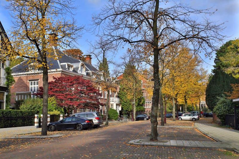 Straße Koningslaan in der Mitte von Amsterdam nahe dem Vondelpark Die Niederlande stockfotos