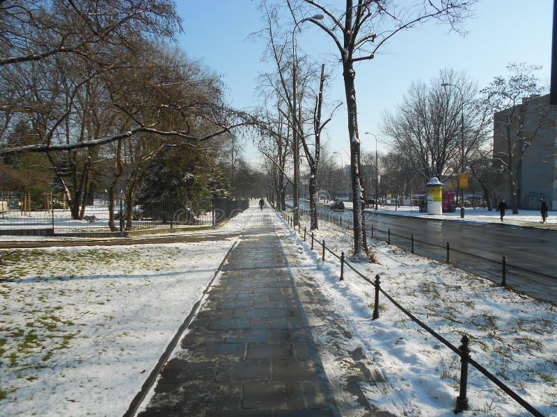 Straße in Krakau stockfotos